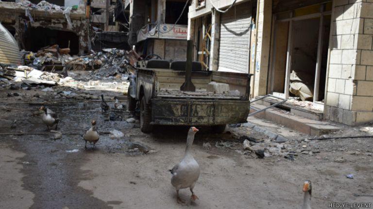 Yarmuk'ta insanların olmadığı, kazların dolaştığı sokaklar...